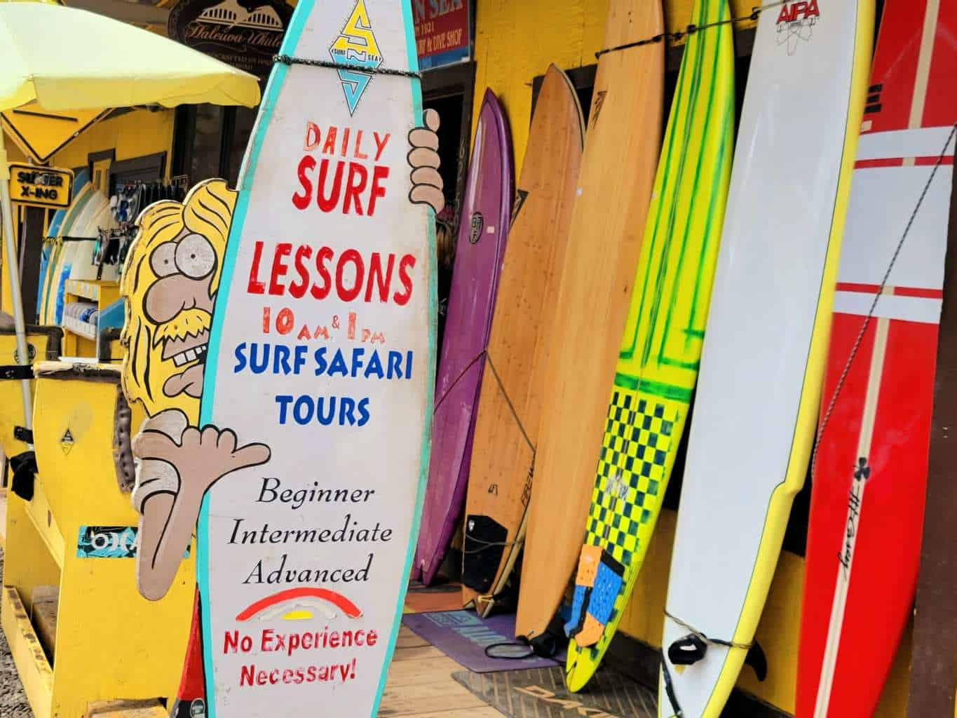 Welcome to our Surf Lesson!