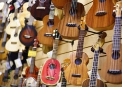Our Recommended Ukulele Stores in Waikiki